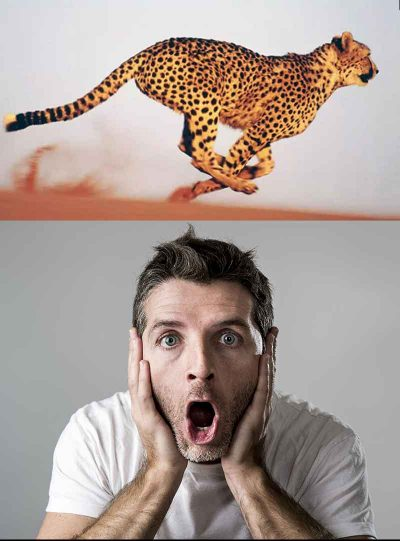Premature Ejaculation: an image of a cheetah running in mid air; and a man's face while gasping in frustration or surprise.