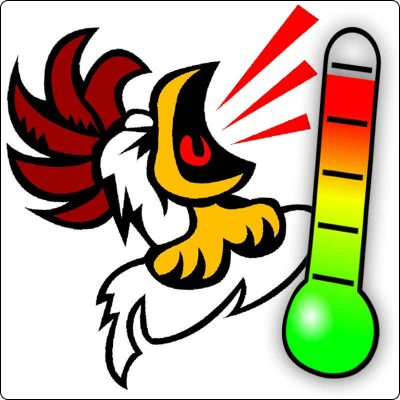 Clip art of a screaching chicken next to a large thermometer.